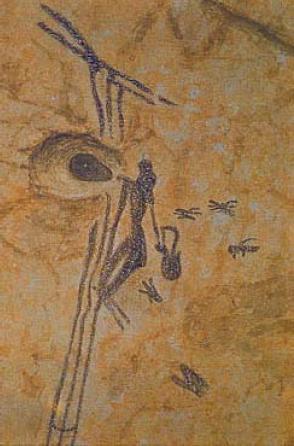 Pintura del año 6.000 a. de C., muestra de la antiguedad de la apicultura.
