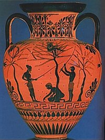 Olive oil was stored in amphoras