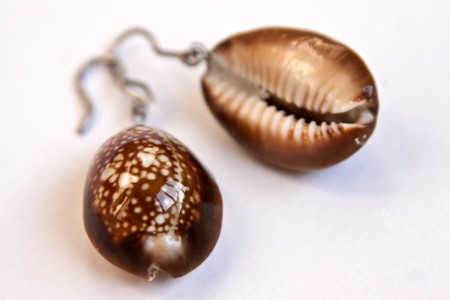 Polishing shell objects with olive oil