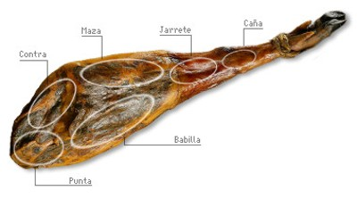 Parts of the spanish ham.