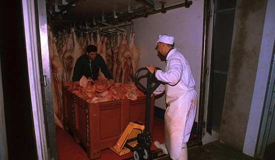 The transport of the pieces of meat is carried out in suitable vehicles where the meat is kept cool