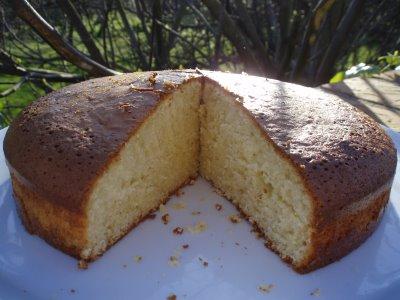 Artisan recipe for making sponge cake