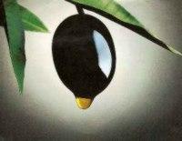 La venta de olivas en EE.UU. creció un 31% y el aceite de oliva un 16%