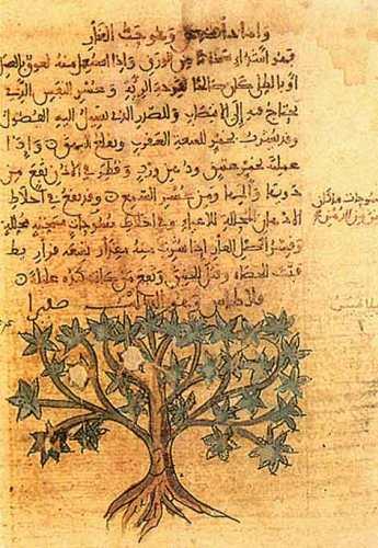 Manuscrito árabe sobre agricultura