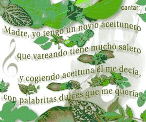 cantar-olivos.jpg