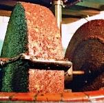 El aceite de oliva se elabora desde la antigüedad, distintos métodos en la historia