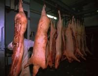 Sacrificio del cerdo