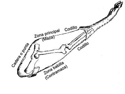 Las diferentes partes que deben conocerse del jamón serrano para cortarlo.