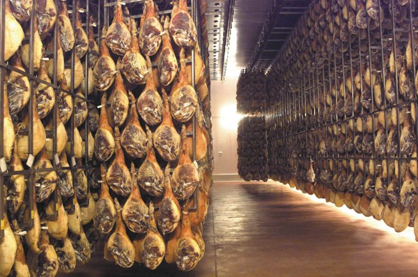 Bereidingsstreken Van Ham En Pata Negra Ham Spaanse Ham likewise Jamon Iberico 13124 also Natural Park Cadiz also Il Suino Iberico Spagnolo Una Razza Unica in addition Visit Spain And Try The Best Spanish Jamon. on pata negra ham