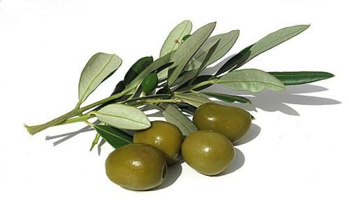 España es el mayor productor mundial del aceite de oliva virgen extra.