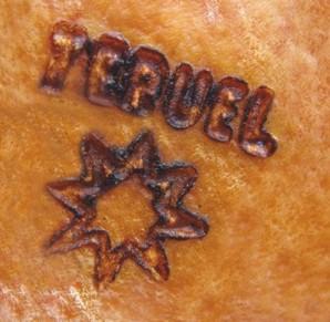 Estrella denominación de origen de Teruel