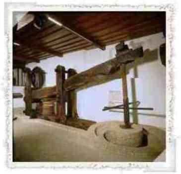 Prensa de palanca y torno destinada a prensar las aceitunas para producir aceite de oliva virgen