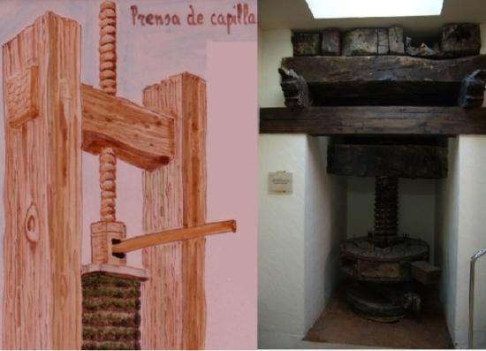 Maquina de prensado de capilla para el aceite de oliva