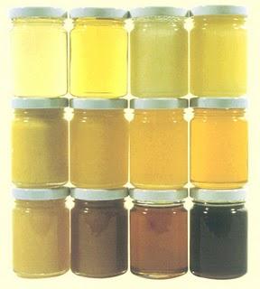 Diferentes clases de miel según la planta recolectada.